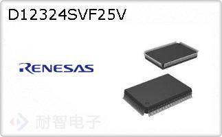 D12324SVF25V
