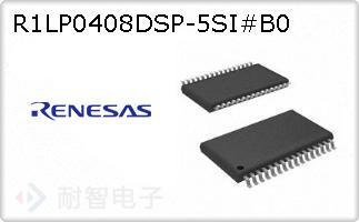 R1LP0408DSP-5SI#B0