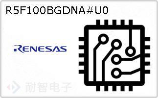 R5F100BGDNA#U0
