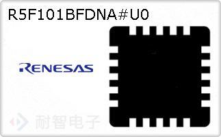 R5F101BFDNA#U0