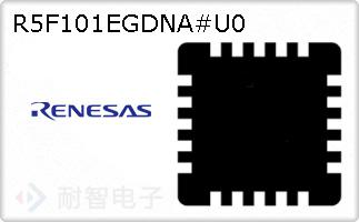 R5F101EGDNA#U0