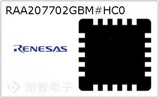 RAA207702GBM#HC0